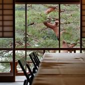 目の前に広がる嵐山と保津川の景観を楽しめる絶好のロケーション