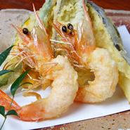 当店では毎朝獲れたての魚介類はもちろん、お野菜やお酒にもこだわりがあります。和歌山県産のお野菜や地酒を数多く取り揃え、地元和歌山の味覚をお届けしていきます。