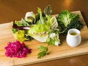 当店では奈良県生駒市にある「ひらひら農園」でこだわって生産された野菜が沢山使われています。彩り豊かな野菜が持つそれぞれの個性を感じられるお料理色々。