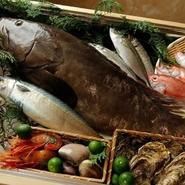 北海道は根室・函館。九州は五島列島・玄界灘など 全国各地から、こだわりの高級魚を沢山仕入れております。また、当店でしか召し上がることができない珍しく希少な魚も取り揃えております。