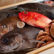 九州や北海道の根室・函館など豊富な水揚げ量を誇る漁港から直接買付しています。早朝に注文を入れているので、その日の昼前には到着。鮮度抜群の日本の贅沢な旬をいち早く堪能できます。