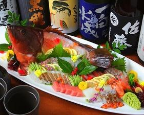 新鮮なその日ごとの地魚をたっぷり堪能! 『旬のおまかせ刺身盛り合わせ』