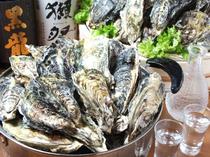 数千個水揚げされた中から、プロが選び出す約150個の上質な牡蠣