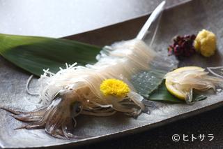 活魚料理 いか清 本店(座敷あり、和食)の画像