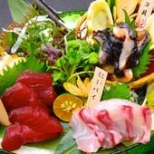 料理長自ら毎朝市場で鮮魚を厳選!特選刺身五種盛り