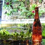 4名様以上からのセレブ女子会コースご利用で シャンパンタワープレゼント。