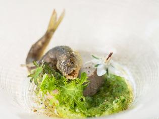 軽井沢の「野菜」をふんだんにつかい、彩りも豊かに