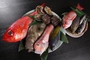 海の幸を心ゆくまで味わえる「各種地魚」