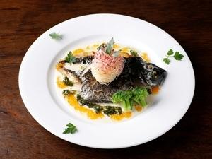 漁港直送、獲れたて新鮮な魚を使った『本日の鮮魚のカルパッチョ』