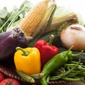 京都・大原の【せぼらびfarm】直送の新鮮な野菜を堪能
