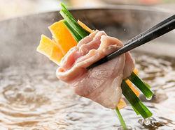 ソフトドリンクの飲み放題付◎豚と牛のしゃぶしゃぶを心行くまでご堪能いただける食べ放題コースをご用意!