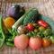 私の地元、島原の有機野菜