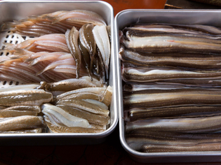 江戸前である意味を考える。天ぷらという調理に適した「魚介」