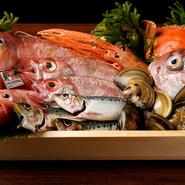 キンキ、のどぐろ、あかざエビなど、全国から取り寄せられた旬の魚介類が豊富に勢揃い。その中から、好きな食材を選び、一人一人の好みに合わせた料理へと仕立ててくれます。
