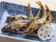 琵琶湖で捕れた小ぶりの鮎を炭火で塩焼きに。外はパリパリ、中はふんわりの焼き加減に熟練の技が光ります。