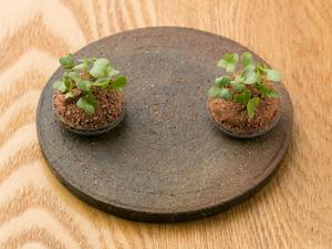 スペシャリテにふさわしい記憶に残る一品『フォアグラ/カカオ/生姜』※一例です。季節ごとに変わります。