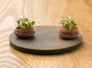 和の食材も自然に取り入れた料理『フォアグラ/生姜/カカオ』