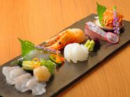 季節の魚介類を堪能できる『お造り盛り』
