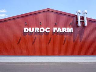 【豚バルデュロック】は、四万十町 豚農家の直営バルです。