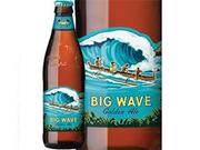 フルーティーな味わいでビールの苦みが苦手な方にも飲みやすいビール。飲みごたえはしっかりとあり、ビールを飲んでいる満足感が得られます。