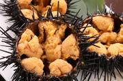 積丹産の生ウニはまだ針が動いているほど新鮮!海水の塩分が絶妙な味付けになっているので調味料なしでそのまま美味しくいただけます。防腐剤等一切使用していない本物のウニの味を堪能することができます。