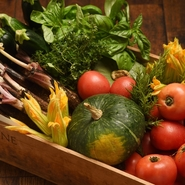 採れたて野菜は、新鮮なまま調理できることが最大の魅力です。また、四季ごとに約20種類ほどを栽培し、旬ごとに違う野菜を使ったメニューをご提案。鮮度抜群の魚介は明石産にこだわり、地産地消も大切にしています。
