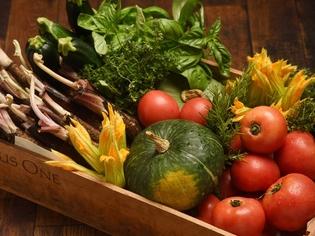 減農薬法を用い自家菜園で育てる旬の野菜と、地元明石の魚介