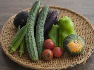 出来る限り、無農薬、自然農法で栽培された野菜を厳選