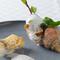 魚 ~山口県産 天然の甘鯛のうろこ焼き  北海道 つぶ貝 ソースカプチーノ~
