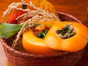 北海道産のウニに、ホウレン草や、春菊など、季節の旬野菜を合わせた、器も愉しい逸品。 コース料理一例