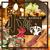 完全個室居酒屋 和食バル 小次郎 八重洲中央店