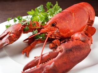 地元・東海エリアを中心とした優れた肉や贅沢なオマール海老