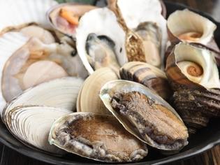 鮮度と旬や地域にこだわって厳選した貝