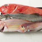 魚は千葉産も扱いますが、中心となるのは和歌山の業者。その時々で揚がる鮮魚を、おまかせで仕入れています。この日は金目鯛、スズキ、イトヨリ、甘鯛。これらを凝縮して作るシェフの『魚の裏ごしスープ』は絶品。