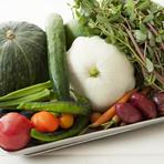 野菜は千葉市内で化学肥料や農薬を使わずに多品目を作る「しげファーム」から多く仕入れています。週に3箱、内容はおまかせで送られてきますが、どれも力強い味。ほかに和歌山「小川農園」からも送られてきます。