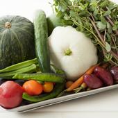 各々の力強い個性が表現された野菜は千葉のこだわりの生産者から