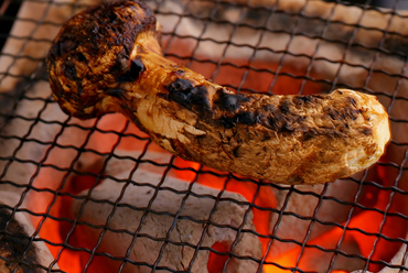 松茸を丸ごと一本、炭火でじっくり焼き上げる至高の味『松茸炭火一本焼き』