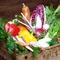 新鮮な野菜は地元の契約農家のから直接届いたものを使用