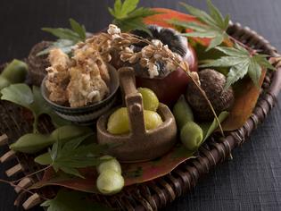 その月にちなんだ料理を楽しめる『秋の吹寄(季節の前菜)』
