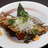 のどぐろ、松葉ガニ、岩がき、白いか、もさ海老など『旬の地魚料理』