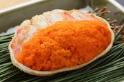 勢子蟹とは、メスの松葉蟹のこと。オスに比べて漁期が短く、11月~12月限定の貴重な味覚です。サイズは小さめながら、蟹本来の旨みがぎっしり。お腹に詰まった内子と外子の異なる食感も楽しめます。