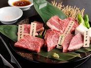 肉それぞれの違いを見つけるのも面白い『食べ比べ5種盛り』