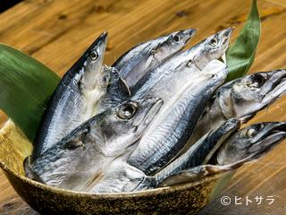 海鮮屋台 黒船の料理・店内の画像2