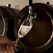 サングリア、キール、ビアスプリッツァー、カルピス白ワイン
