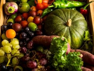 四季それぞれに変化していく、鮮度や栽培法にこだわった野菜