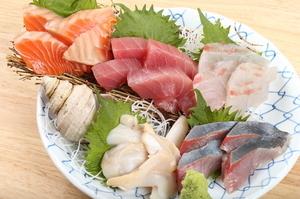 沼津で採れた鮮魚を贅沢に『お刺身 5点盛り』