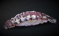北海道の旬をそのまま丼ぶりに。