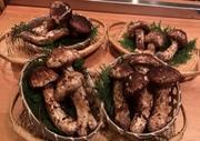 松茸土瓶蒸し 焼き松茸 松茸てんぷら 松茸の土鍋炊き 松茸と鱧のお鍋等ご用意しております。 ※10月末頃まで