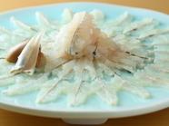 上質な旬の魚を存分に『初夏のお造り』