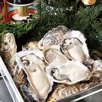 本日の生牡蠣